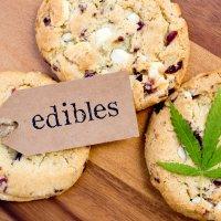 The Cannabis Kitchen
